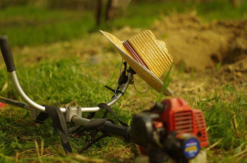 Grass-cutter